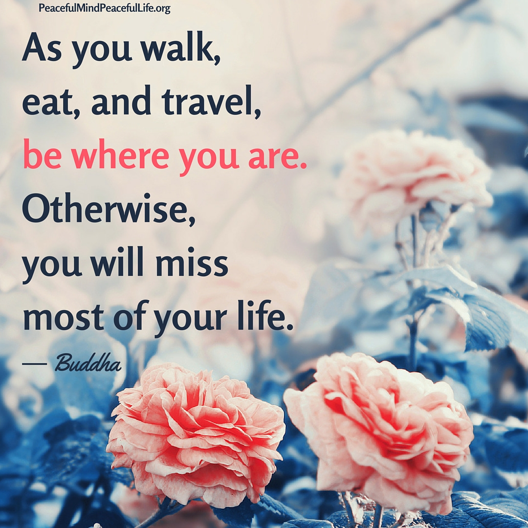 As you walk, eat, and travel, be where you are. Otherwise,you will miss most of your life.